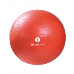 Pilates lopta  r 55 cm