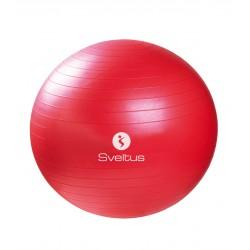pilates lopta 65 cm